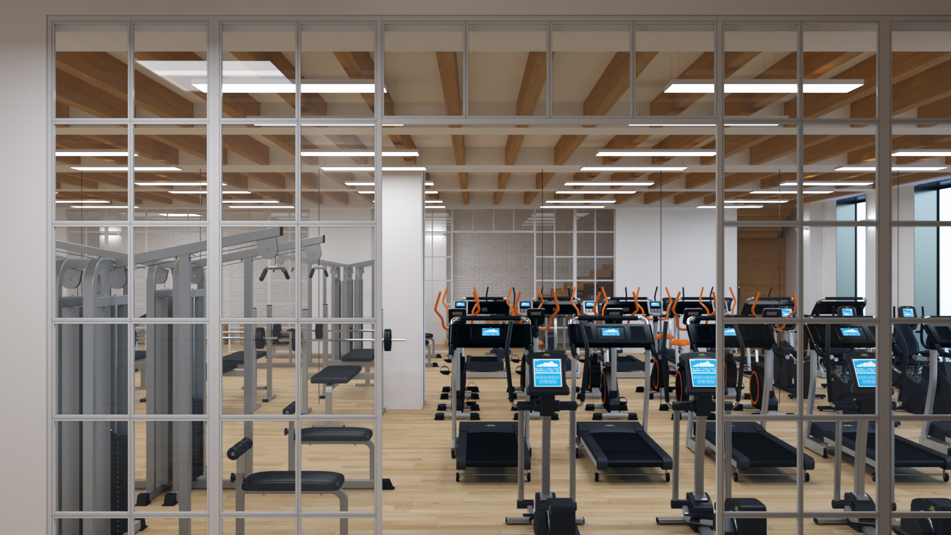 Proyecto_gym_Madrid_005