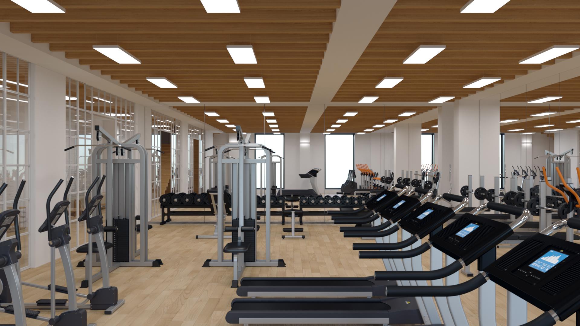 Proyecto_gym_Madrid_007